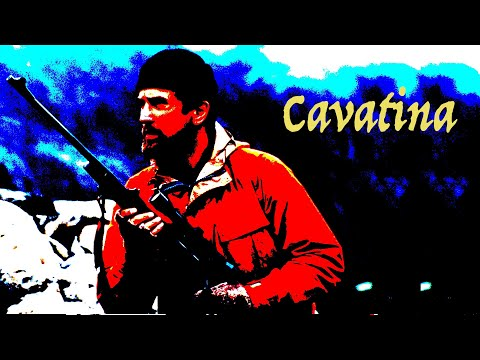 Cavatina (Cover) - Instrumental Guitar - Frédéric Mesnier