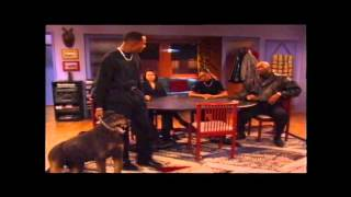 Martin Famous Dog Scene (Best Quality)