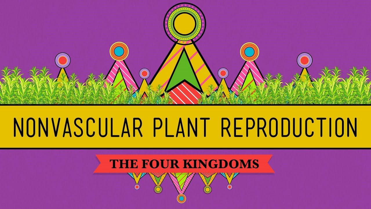 Sex Life Of Plants 112
