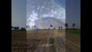 Download FOZIA SOOMRO MARWARI_.BEAUTIFULL SONG 3Gp Mp4
