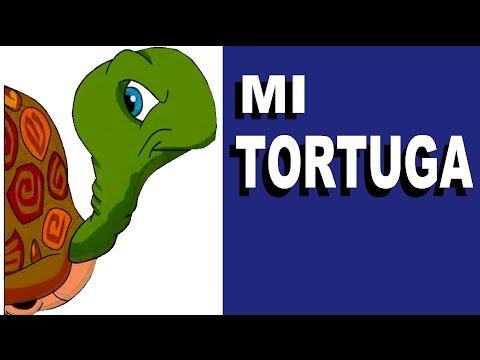 MI TORTUGA CANCIONES INFANTILES