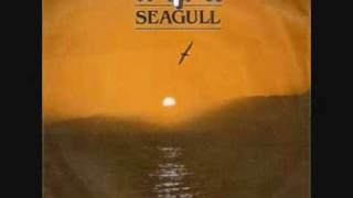 Watch Kayak Seagull video