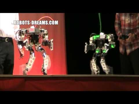 Robot Japan 5: Garoo vs Chrome Kid Final