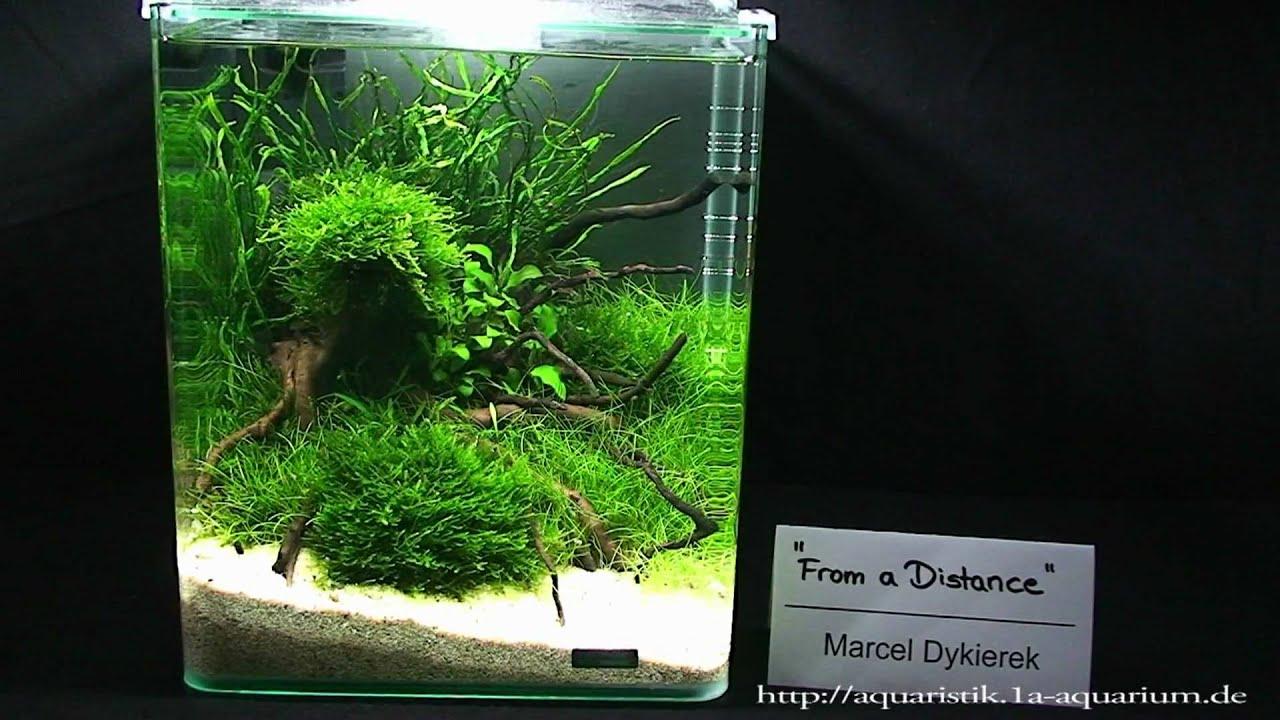 Nano Aquarium Aquascape : Nano Aquascapes 2010 Hannover Part 1 - YouTube