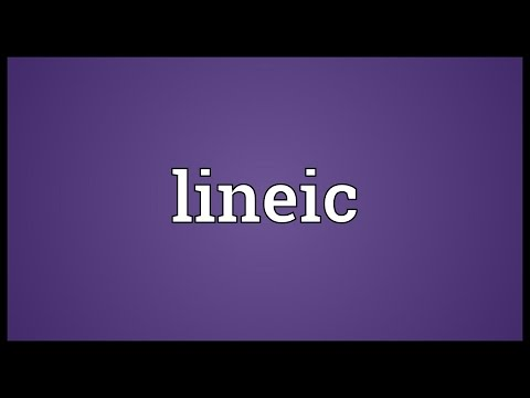 Header of Lineic