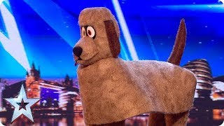FIRST LOOK: Dudley the Dancing Dog   BGT 2018
