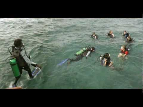 India Lakshadweep Bangaram Island India Hotels Travel Ecotourism Travel To Care