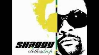 Watch Shaggy Shut Up And Dance video