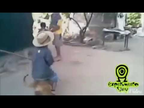jaripeo-mexicans.html