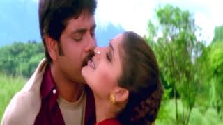 Ravoyi Chandamama Movie    Swapnavenuvedo Video Song     Nagarjuna Akkineni,Anjala Zhaveri