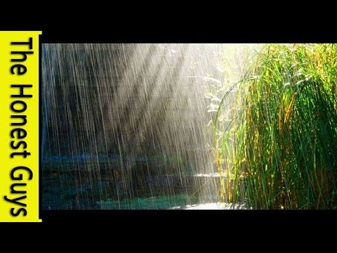 3 HOURS Relaxing Music with Rain Sounds Meditation Music Videos