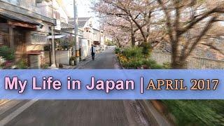 My Life in Japan | April 2017