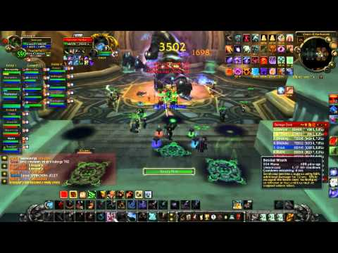 World of Warcraft 3.3.5 WotLK Beastmaster Hunter VoA 25-MAN dps. Гайд по М
