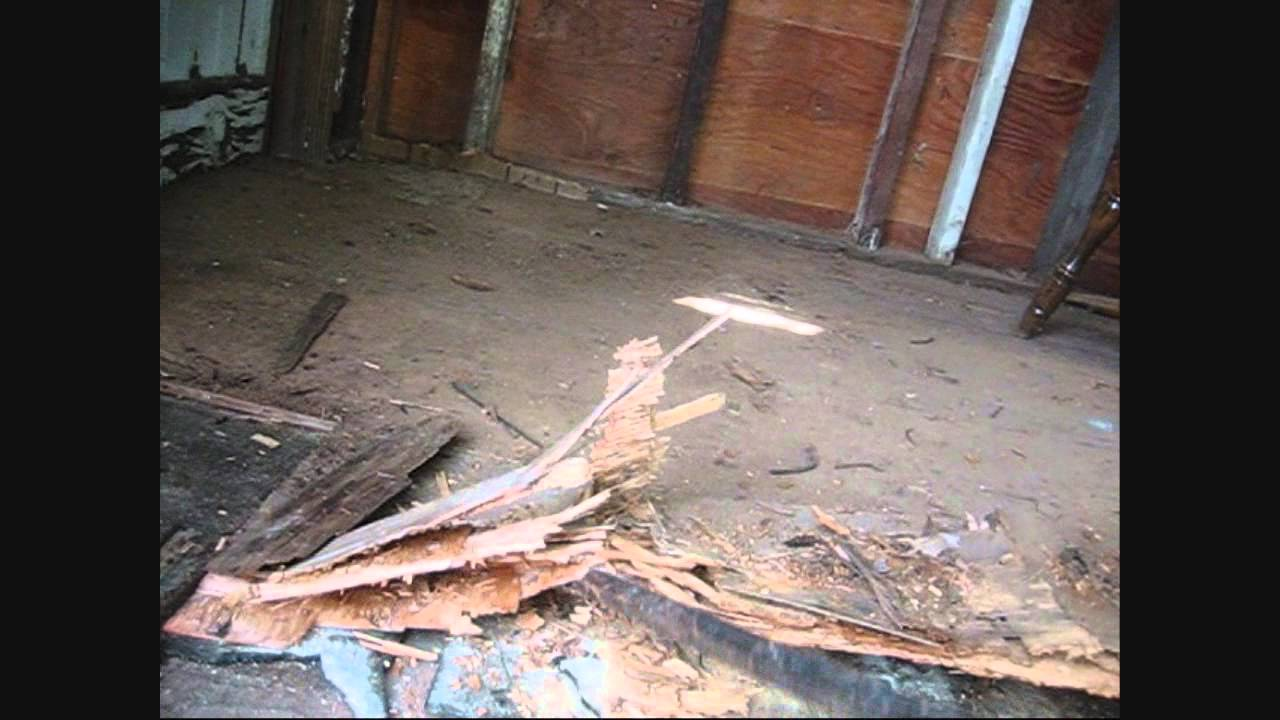 Shed Floor Replacement Part 1 Of 2 Youtube