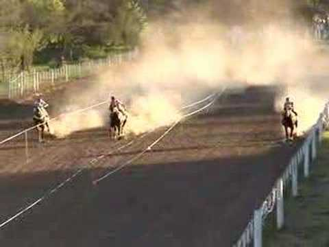 Singarela winning at General Paz Racetrack (Argentina)