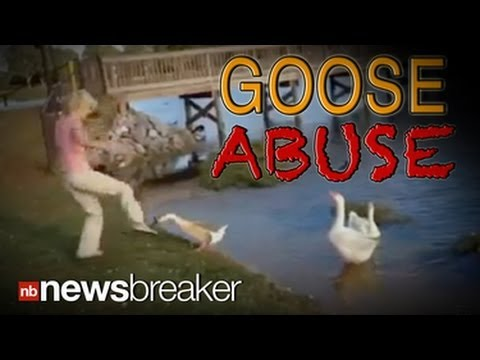 ANIMAL ABUSE: Woman Arrested After She