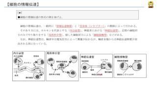 細胞の情報伝達