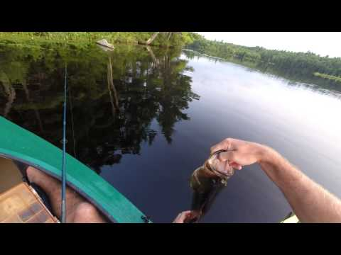 New Hampshire pond fishing part 1