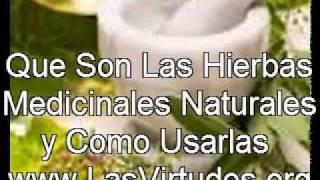 Que Son Las Hierbas Medicinales Naturales y Como Usarlas - video de auto-ayuda.avi