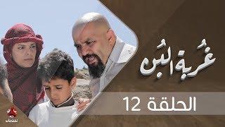 غربة البن | الحلقة 12  | محمد قحطان - صلاح الوافي - عمار العزكي - سالي حماده - شروق | يمن شباب