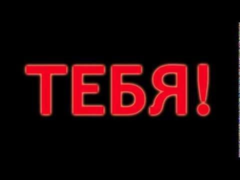 Трейлер «ПташМор-5″
