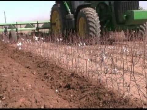 West Texas One Pass for Cotton Video
