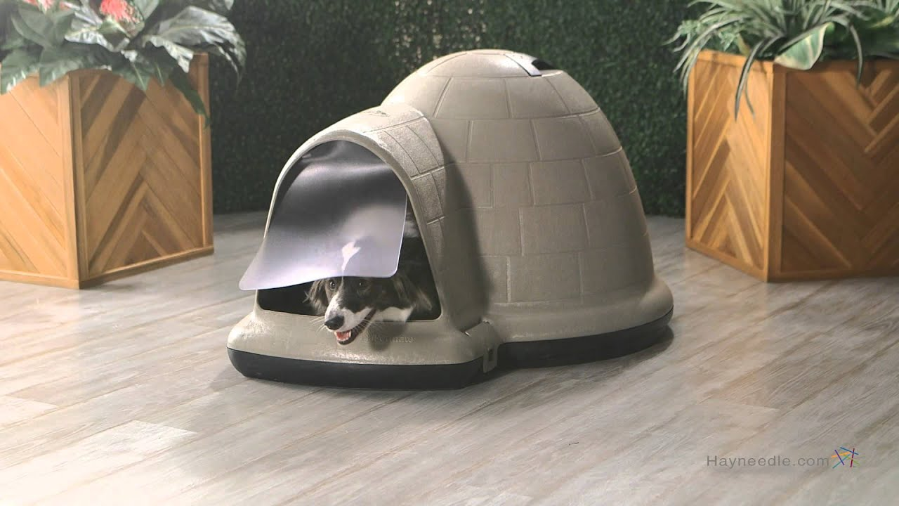 Igloo Dog House Walmart