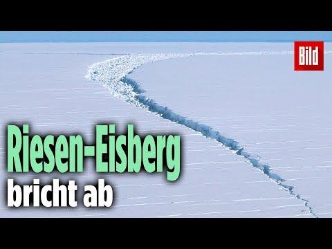Riesiger Eisberg bricht in der Antarktis ab: Er ist 15-mal so groß wie Paris