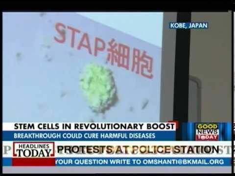 Japan revolutionise Stem cell