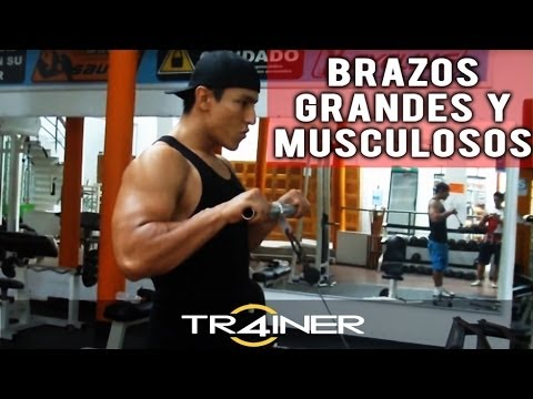 como-sacar-brazos-consejo-y-ejercicio-para-sacar-brazos-grandes-y-musculosos.html