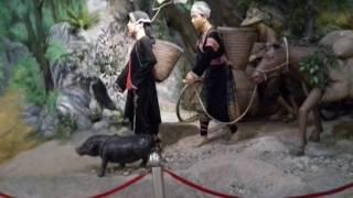 Mus ua si Bao Tang Dien Bien