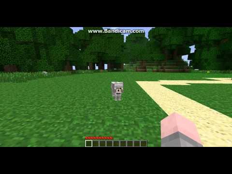 Minecraft DBZ Server-Part 1