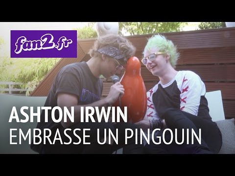 5 Seconds Of Summer : Ashton Irwin embrasse un pingouin klip izle