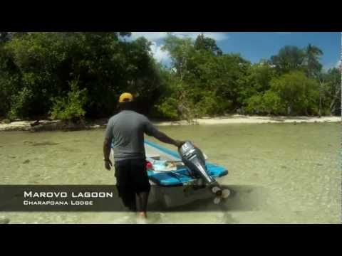 Solomon Islands Adventure - diving, fishing and spearfishing trip
