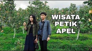 """WISATA PETIK JAMBU APEL STAWBERRY """"BATU"""" MALANG HARI PERTAMA"""