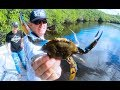Giant Blue Crabs {Catch Clean Cook} STEAMED on the GRILL!