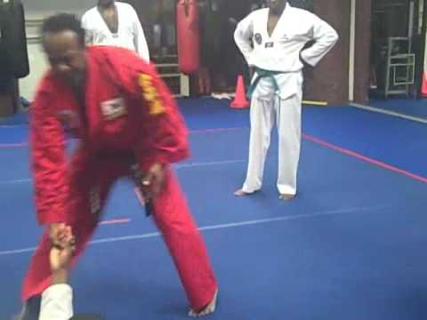 Hapkido Training With Grandmaster S.R. Mo Image 1