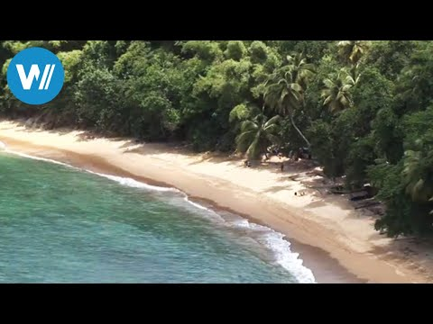 "Tobago (travel-documentary from the season ""Caribbean Moments"")"
