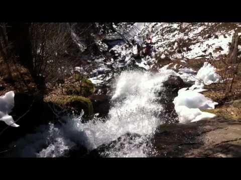 Hasenhorn coster todtnau die spektakulärste rodelbahn deuschlands 2