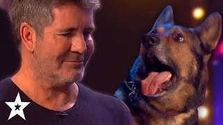 DOG Magician Makes Simon Cowell CRY On Britain's Got Talent 2019! | Got Talent Global