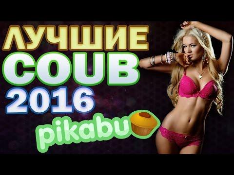 ЛУЧШИЕ COUB 'ики за ФЕВРАЛЬ / по версии Pikabu
