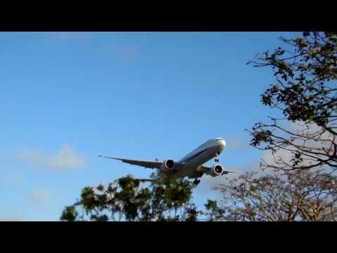 All Nippon Airways - ANA Boeing 777-300ER Landing at LAX