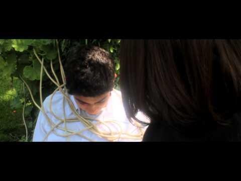 Trailer 100 años de Soledad