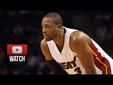 Dwyane Wade Full Highlights at Hornets (2014.11.05) - 25 Pts, 7 Ast