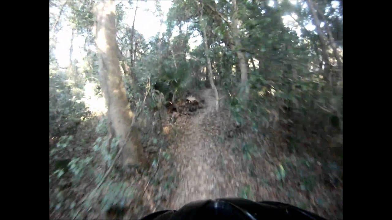Mountain Bikes Trails in Florida New Mountain Bike Trail in