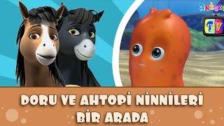 6 Doru ve Ahtopi Ninnileri Bir Arada | Doru ve Ahtopi Çocuk Şarkıları 2016