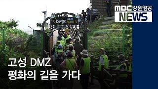 R-르포) 개방 두 달째, DMZ 평화의 길을 가다