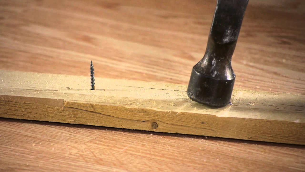 The Best Way To Cut Screws Nails Screws Amp Wall Hangings