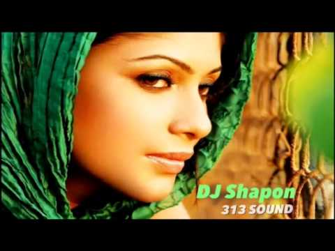 Prithibir Joto Shukh Remix Habib ft. Nancy - DJ Shapon