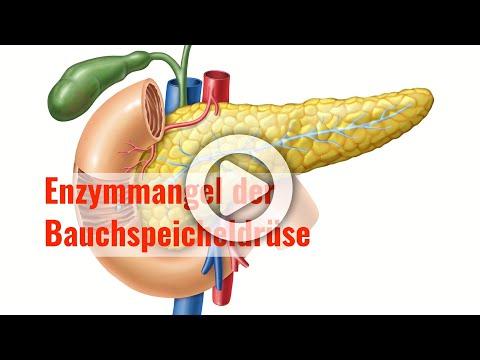 Enzymmangel der Bauchspeicheldrüse - Verdauungsschwäche des Pankreas  erkennen